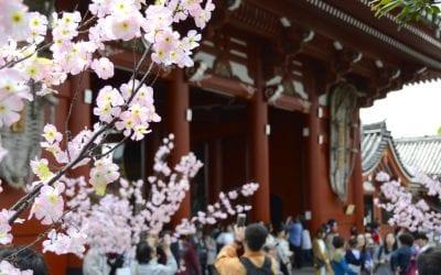 1 week tokyo japan tips