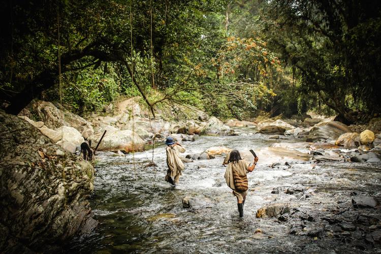 12 - COLOMBIA backpacken natuur kikivandongen