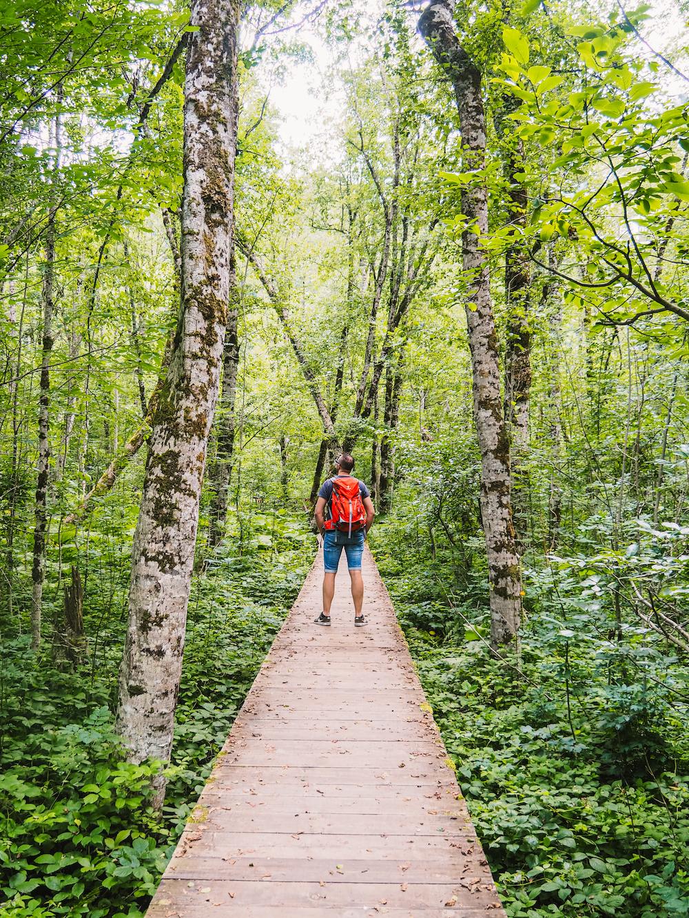 Bezoek Biogradska Gora Nationaal Park