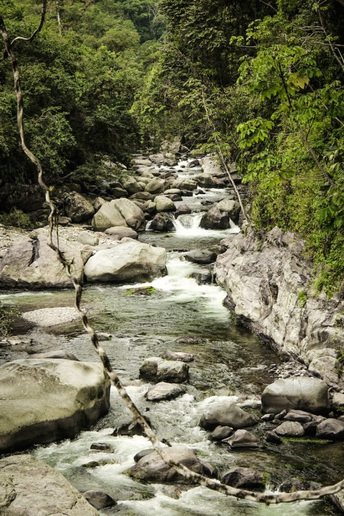 16 - COLOMBIa backpacken jungle