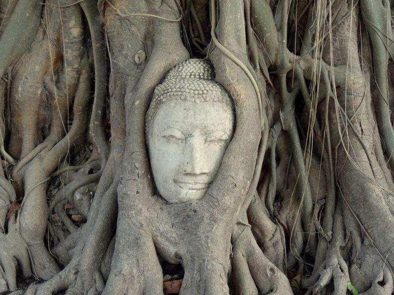 Vakantie Thailand februari
