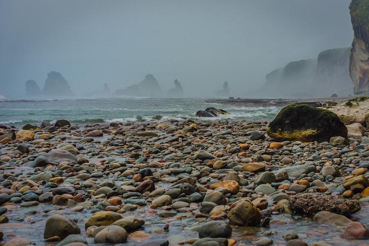Motukiekie nieuw zeeland fotografie