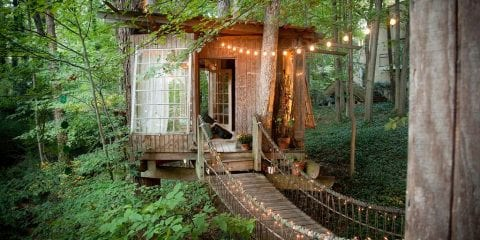 Airbnb Boomhut van je kinderdromen