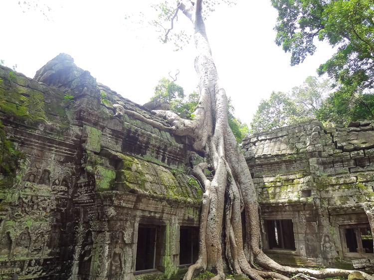 Angkor Wat ruinestad in Cambodja