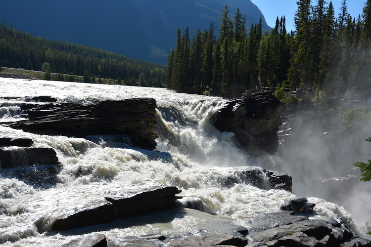 Athabasca falls in West Canada rondreis