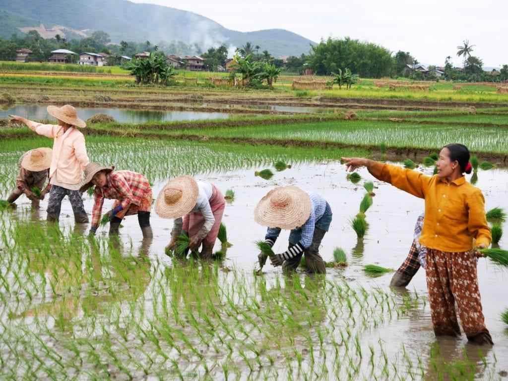 Backpack route Myanmar 2 weken