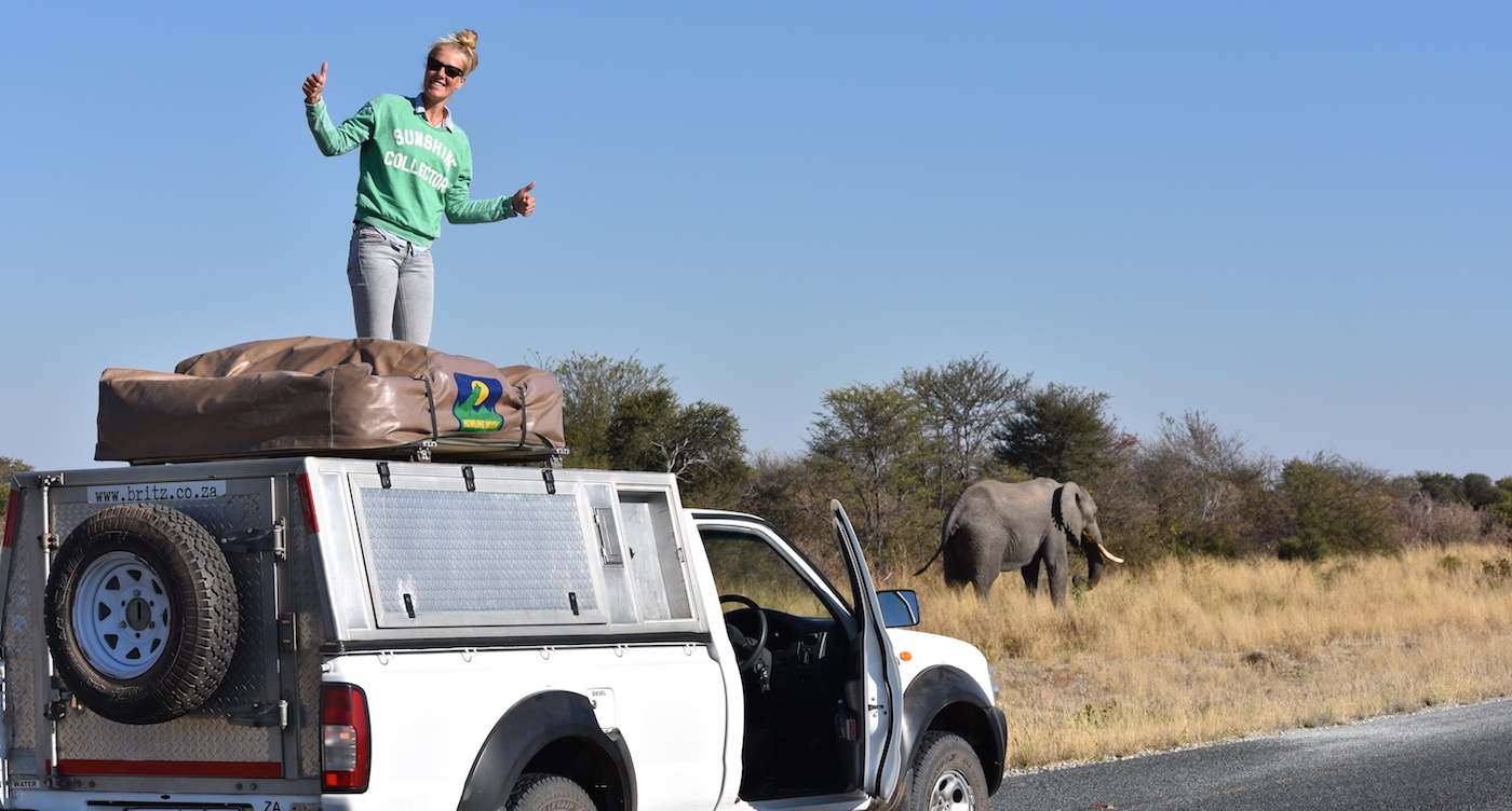 Backpacken Botswana jeepsafari olifanten