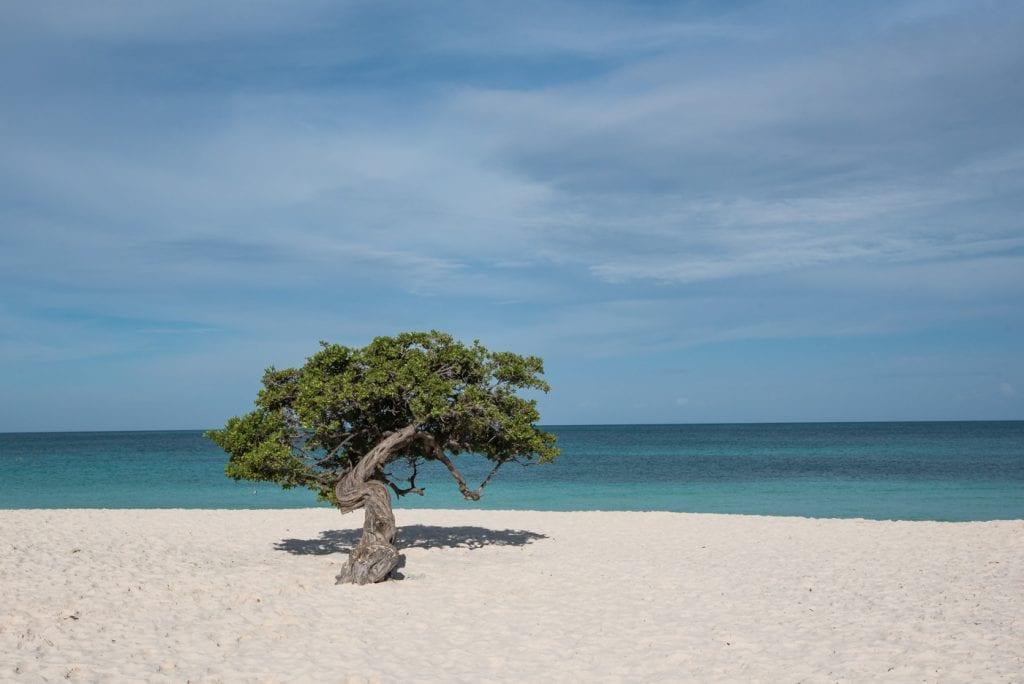 Bezienswaardigheden Aruba vakantie tips Eagle Beach