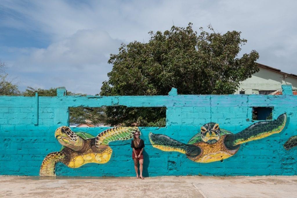 Bezienswaardigheden Aruba vakantie tips San Nicolaas schildpadden