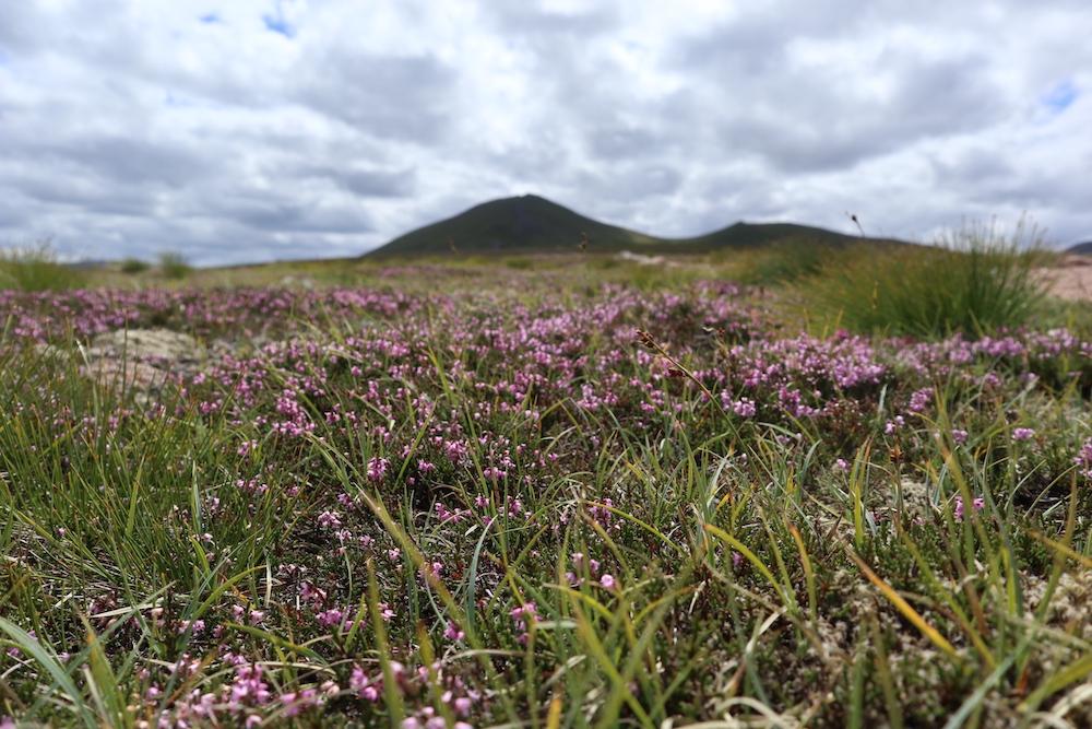 Bezienswaardigheden Schotland Cairngorms National Park
