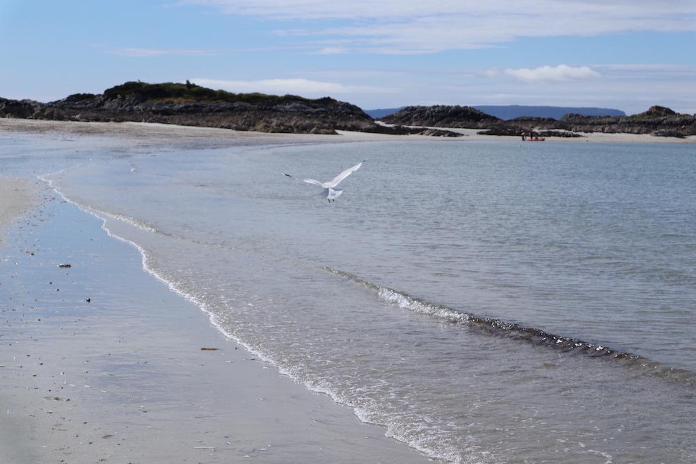 Bezienswaardigheden Schotland, Silver Sands of Morar