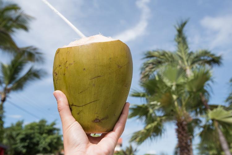Bezienswaardigheden aruba tips Paradera park kokosnoot