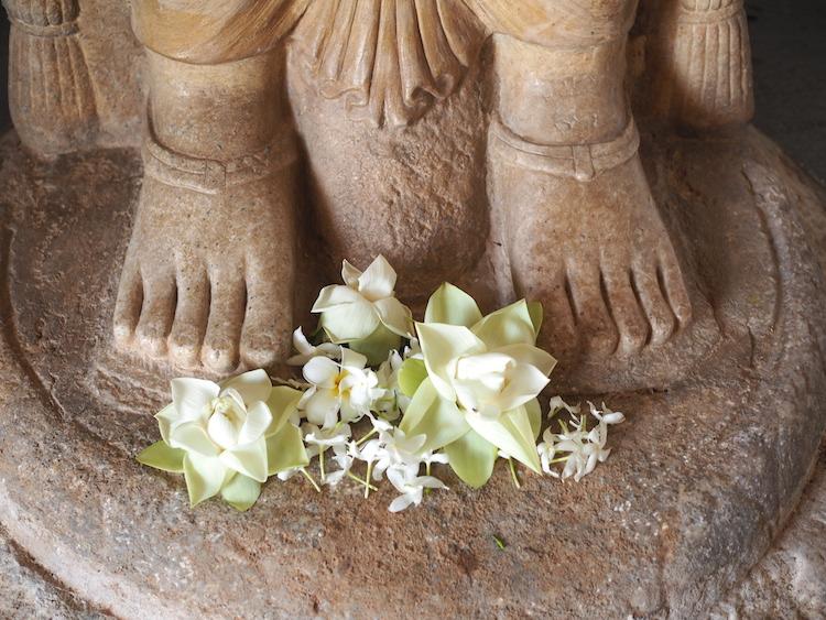 Bloemen-offers-Ruwanweliseya-anuradhapura