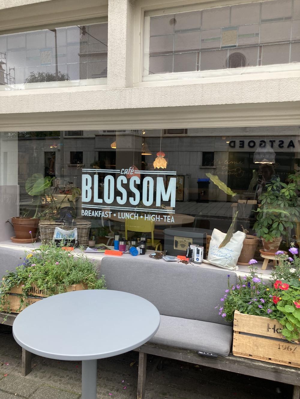 Blossom, Den Haag
