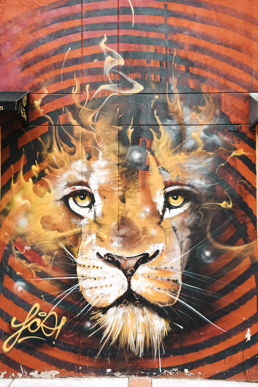 Bogota streetart