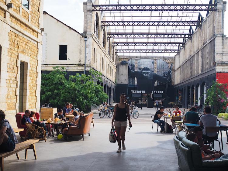 Bordeaux darwin streetart