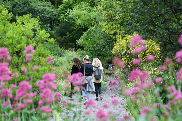 Botanische tuin in zurich wandeling