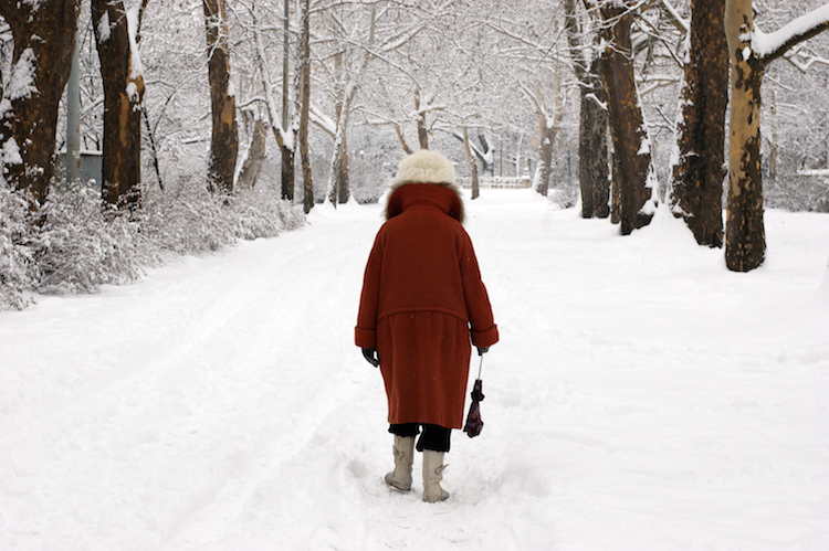 Budapest winter sneeuwwandeling eiland park