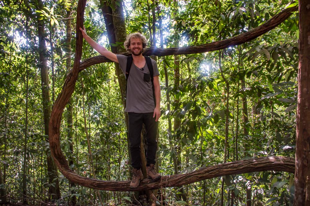 Bukit Lawang jungle tocht Orang Oetan-2