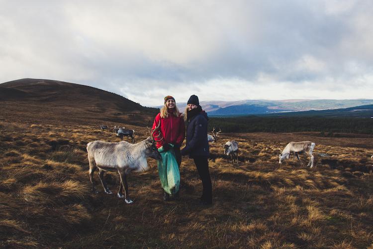 Cairngorms Schotland rendieren met herder