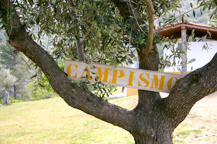 Camping portugal festival