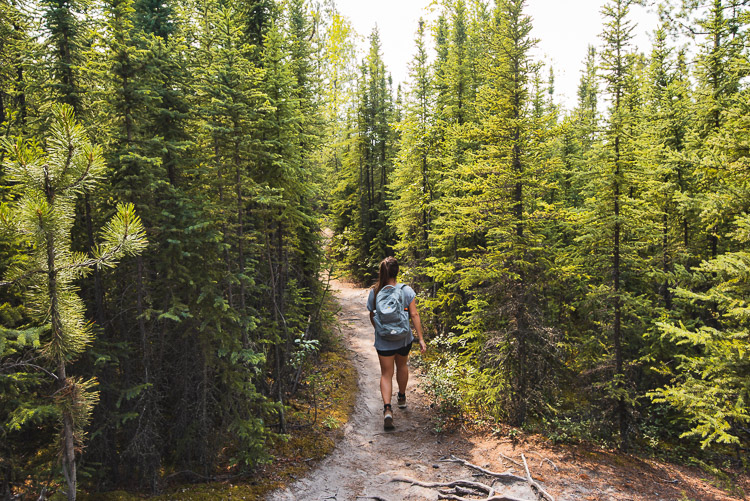 Canada Yukon rondreis Five Finger Rapids