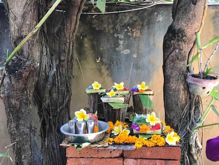 Canggu tips Bali Serenity