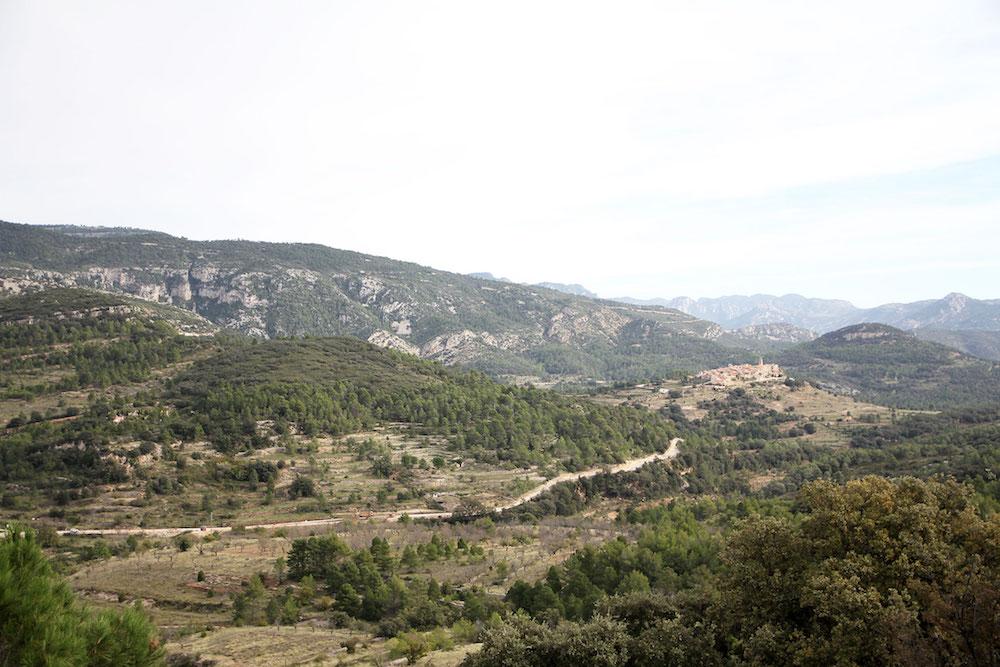 Castellon-Spanje-Tinenca-de-Benifassa-4