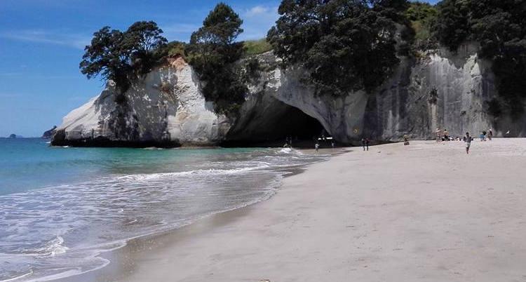 Cathedral cave nieuw zeeland tips