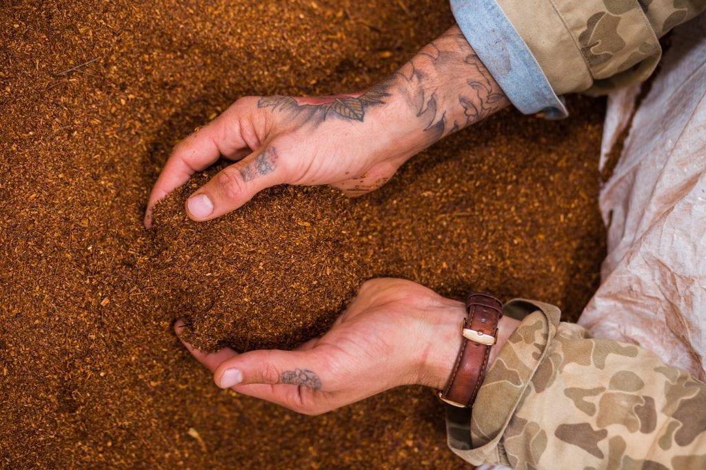 Cederberg Zuid-Afrika rooibos