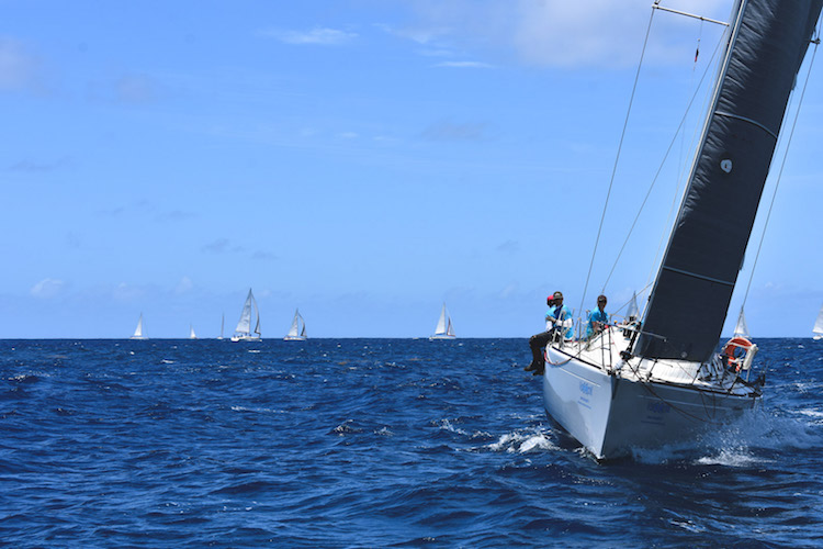 Chase the Race Antigua Sailing week