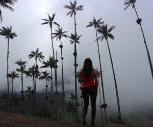 Cocora de valley alleen backpacken colombia