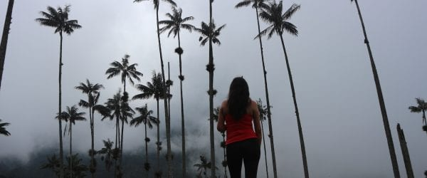 Cocora de valley alleen backpacken colombia