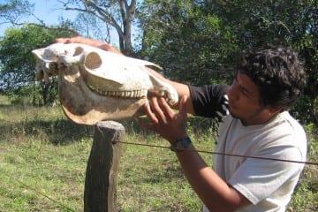 Contact met locals brazilie