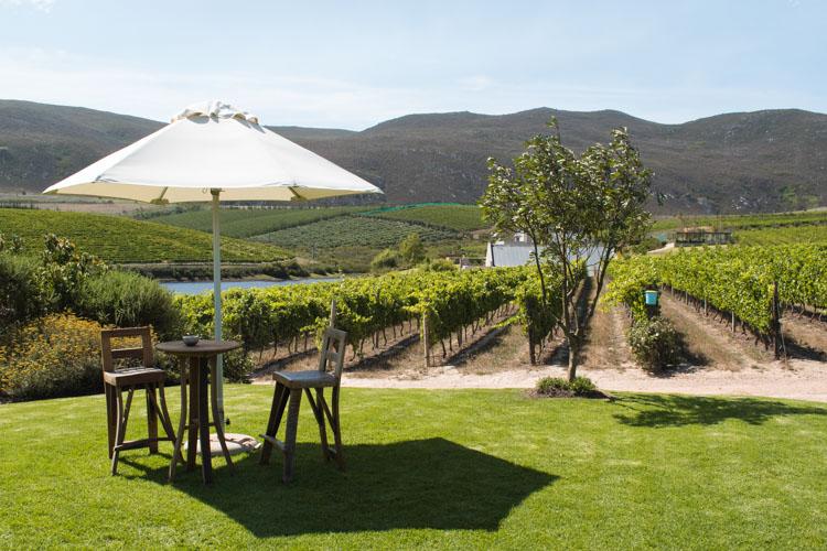 Creation Wines Zuid Afrika activiteiten-4