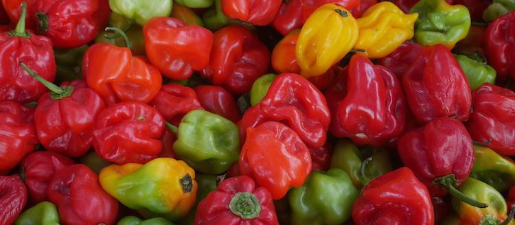 Curacao restaurant markt pepers