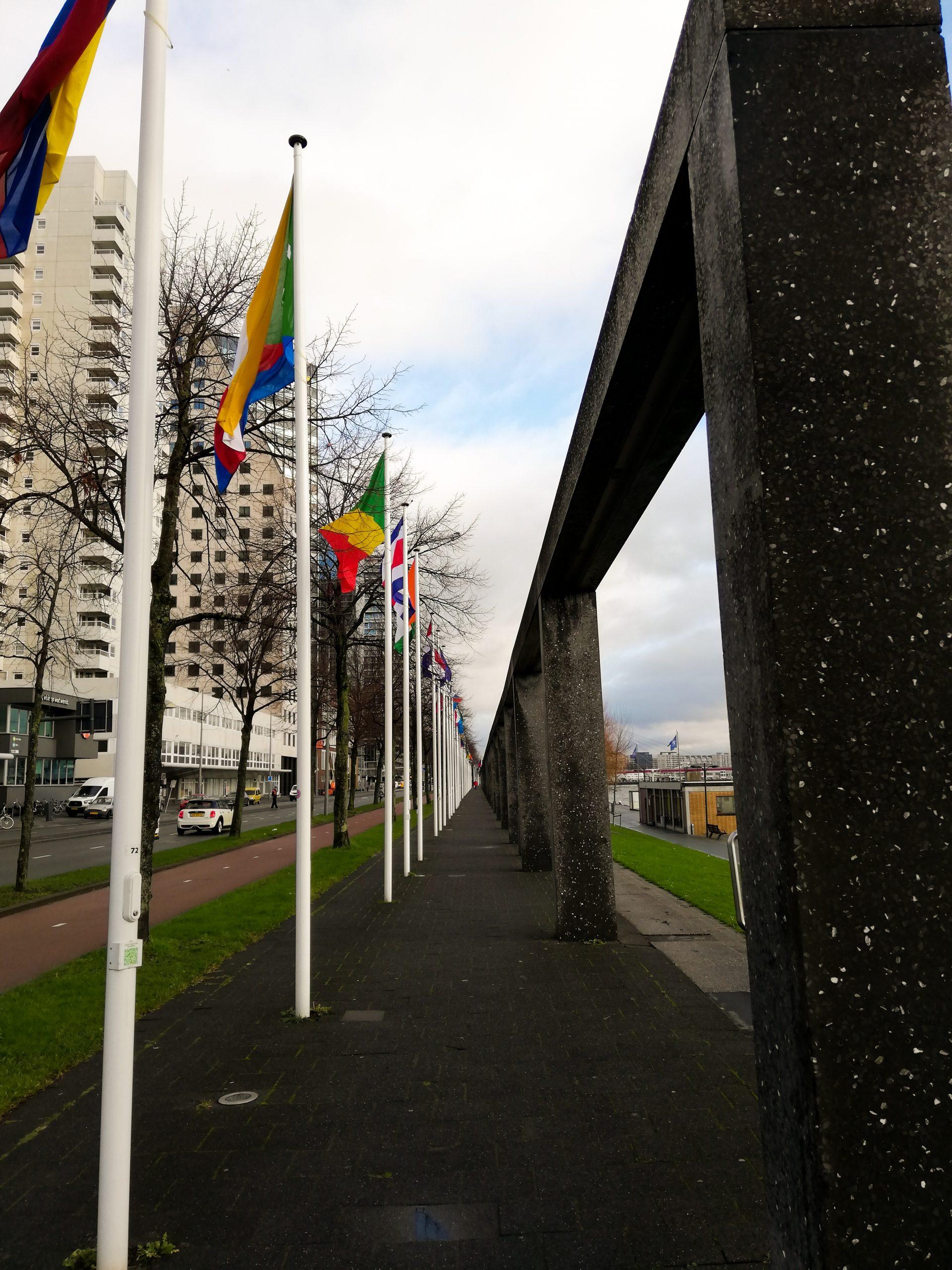 De Boompjeskade van Rotterdam