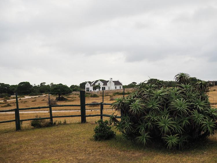 De hoop cottages collection