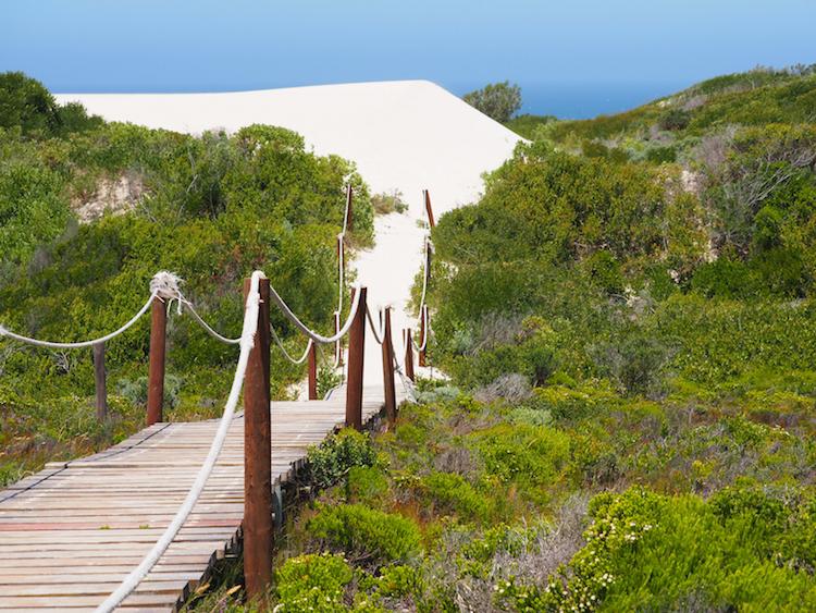 De Hoop Marine Walk Zuid-Afrika