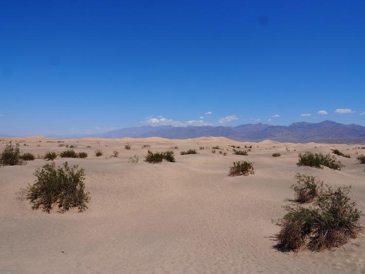 Death Valley Bezienswaardigheden Mesquite Flat Dunes