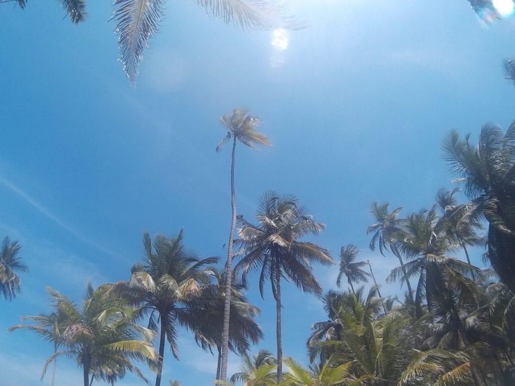 doen in Panama san blas