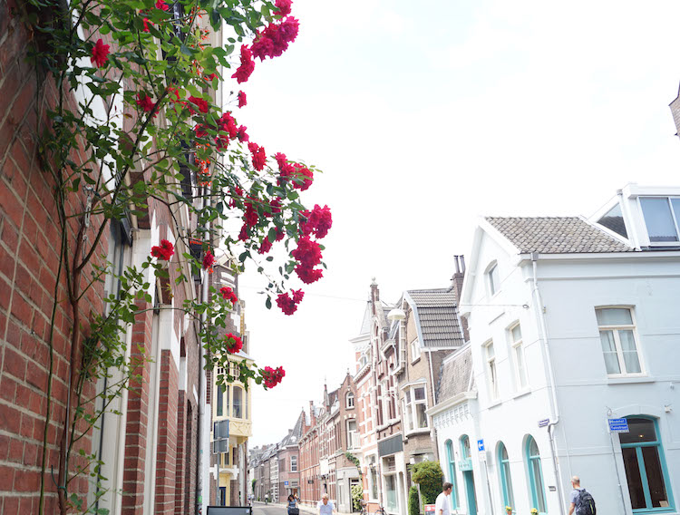 Doen in Tilburg Dwalen