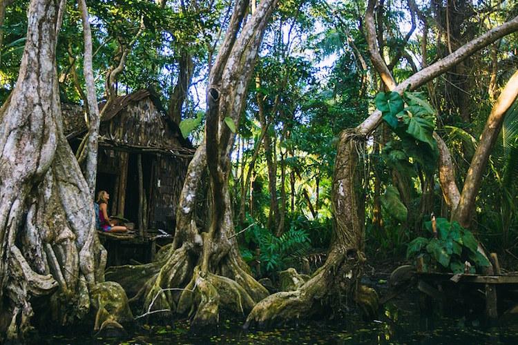 dominica-sarah-lee-caribisch-gebied