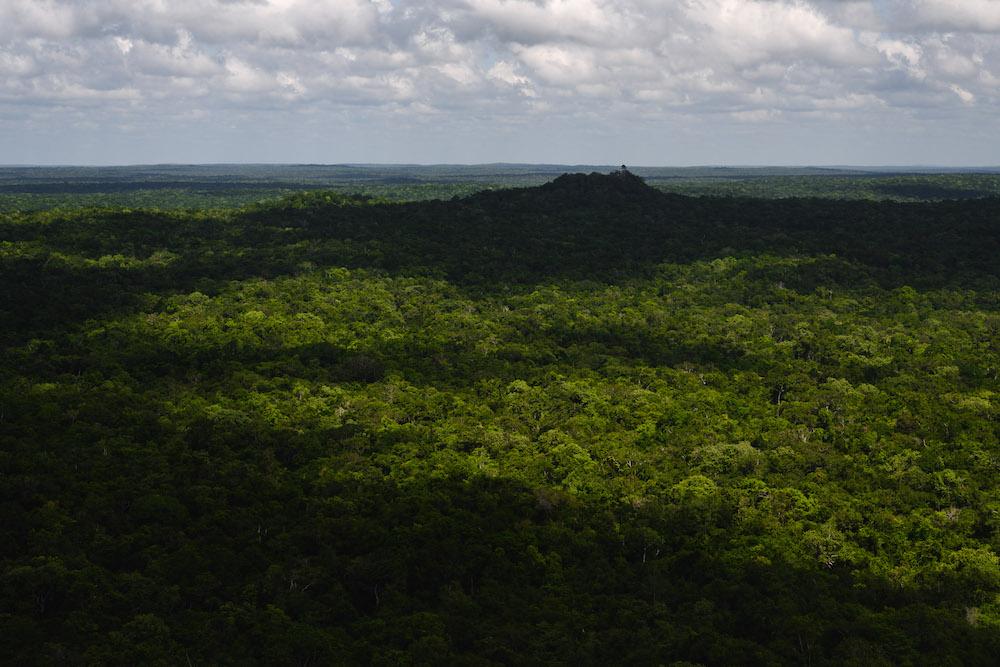 El Mirador Guatemala jungle uitzicht