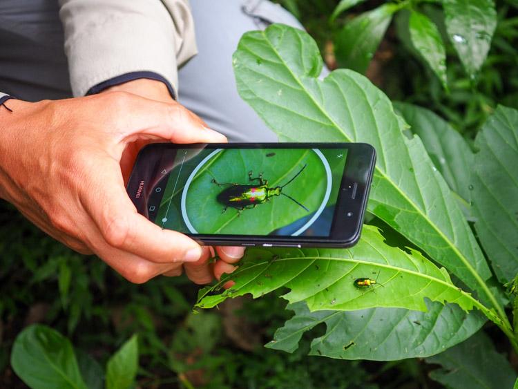 El Silencio lodge spa Costa Rica eco adventure