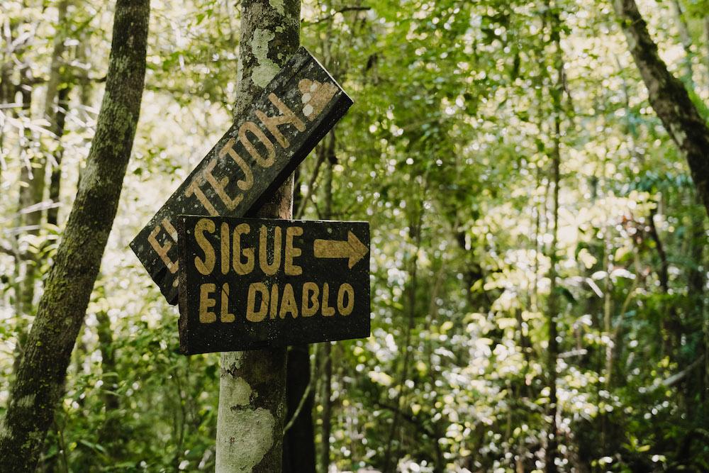 El Zotz Guatemala Sigue El Diablo