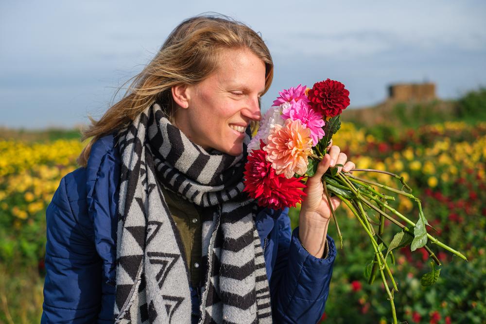 Fietsen Texel bloemen zelfpluktuin