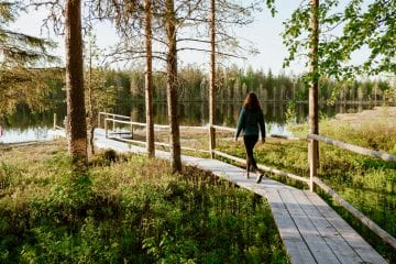 Fins lapland in de zomer wandelen