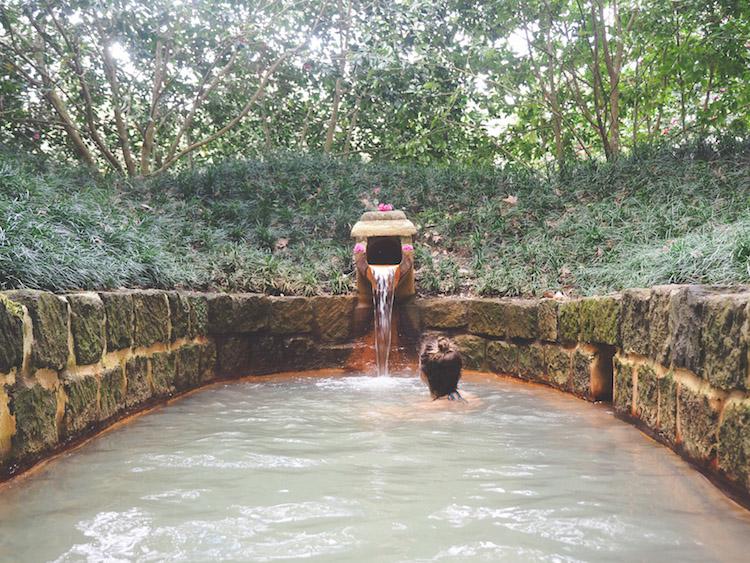 Furnas Terra Nostra Garden Hotel Azoren sao miguel