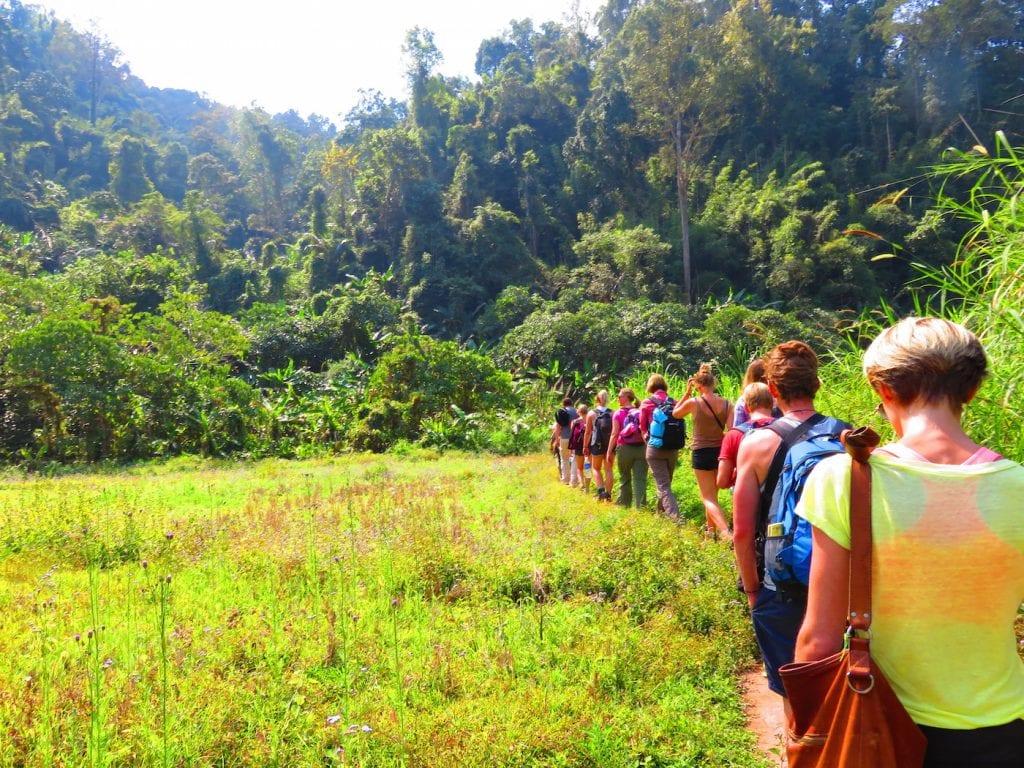 Gibbon Experience in Laos Iris Timmermans